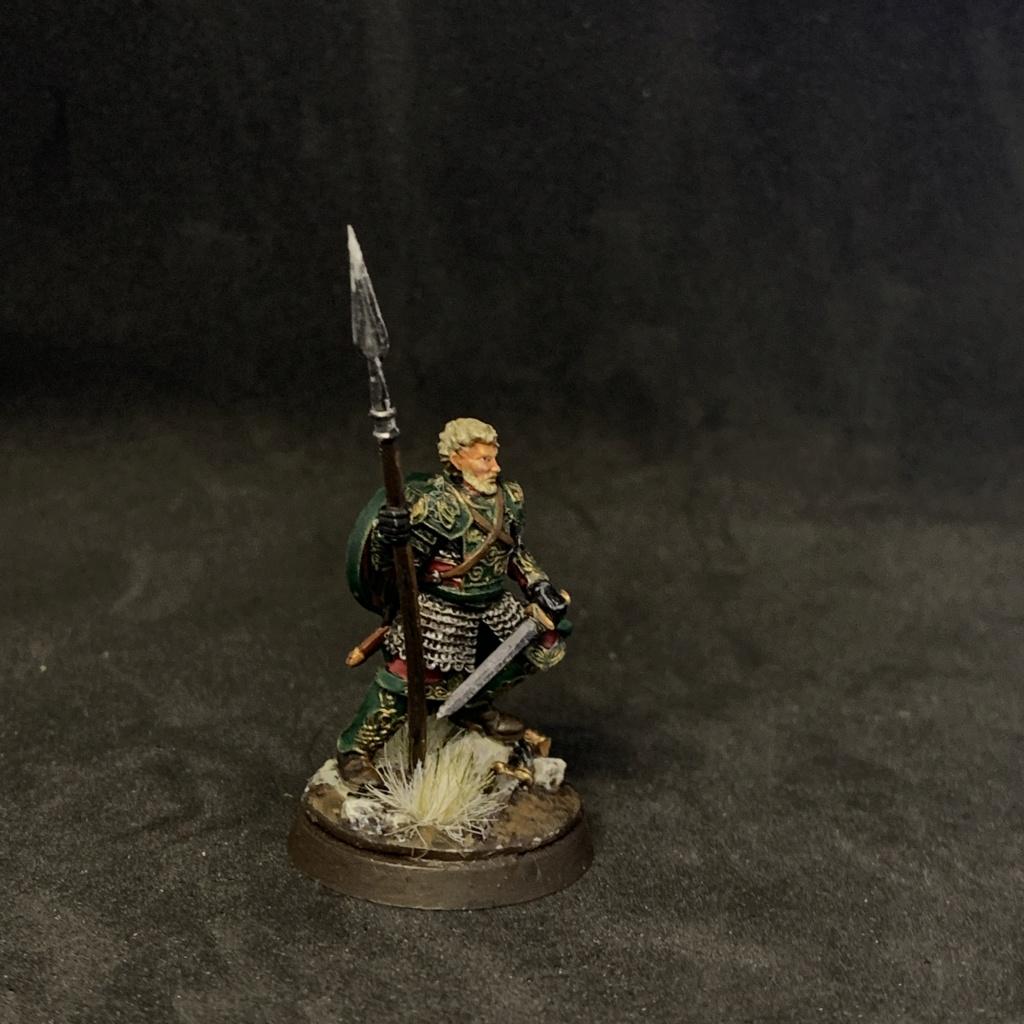 Aragorn et les 5 Armées - Rohan - Page 4 E8c2e010