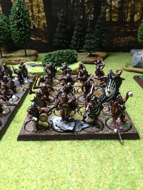 Sauron et ses 10 Armées - L' Armée de L'Immortel - Page 3 Img_0211