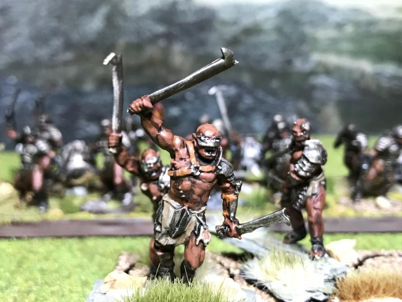 Sauron et ses 10 Armées - L' Armée de L'Immortel - Page 5 Img_2613