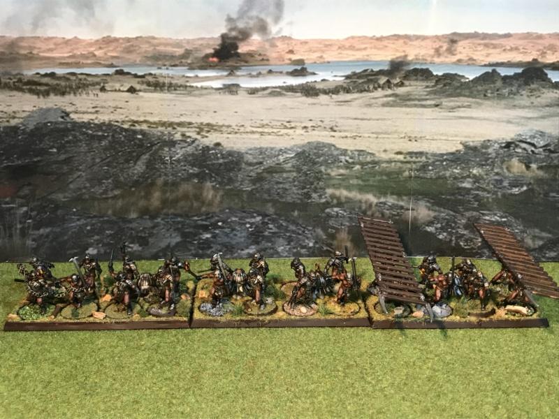 Sauron et ses 10 Armées - L' Armée de L'Immortel - Page 5 Img_2716