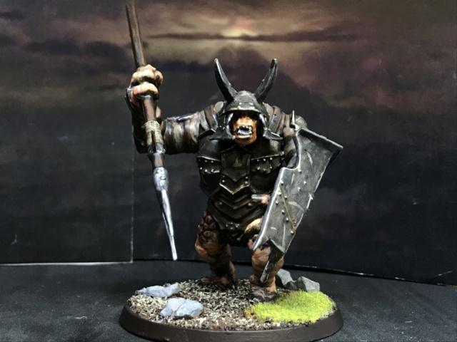 Sauron et ses 10 Armées - L' Armée de L'Immortel - Page 5 Img_3012