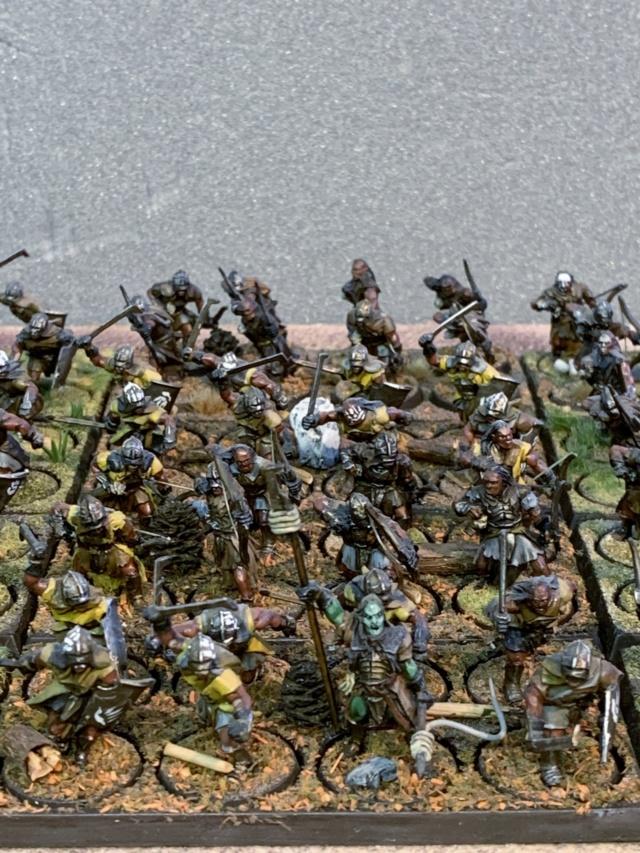 Sauron et ses 10 Armées - L' Armée de L'Immortel - Page 5 Img_3415