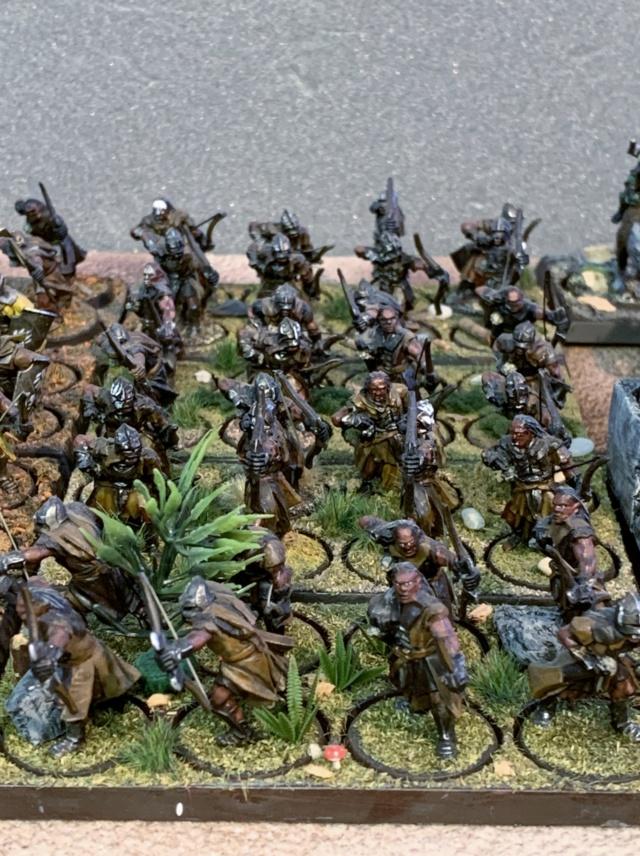 Sauron et ses 10 Armées - L' Armée de L'Immortel - Page 5 Img_3421