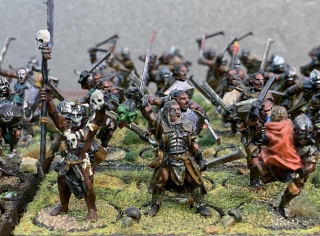 Sauron et ses 10 Armées - L' Armée de L'Immortel - Page 5 Img_3424