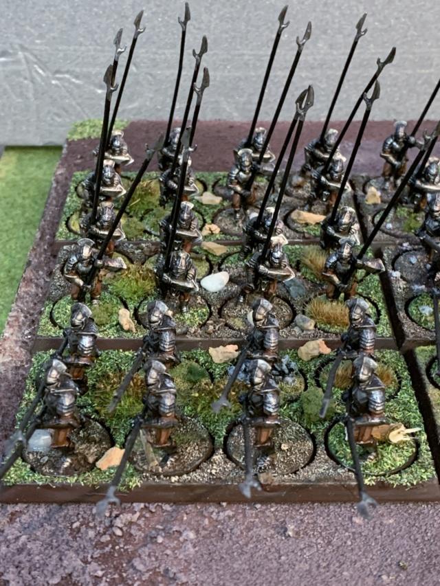 Sauron et ses 10 Armées - L' Armée de L'Immortel - Page 5 Img_3511
