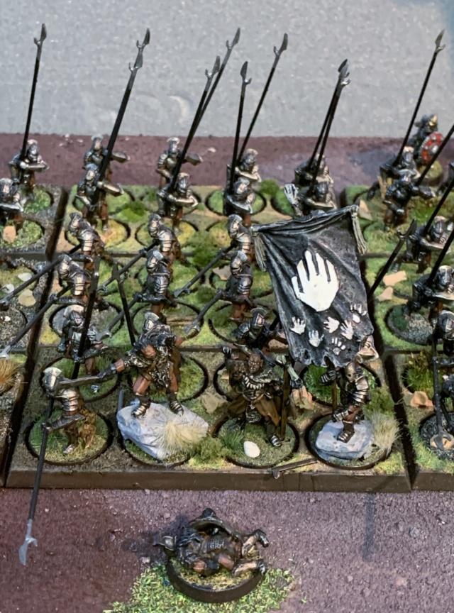 Sauron et ses 10 Armées - L' Armée de L'Immortel - Page 5 Img_3512
