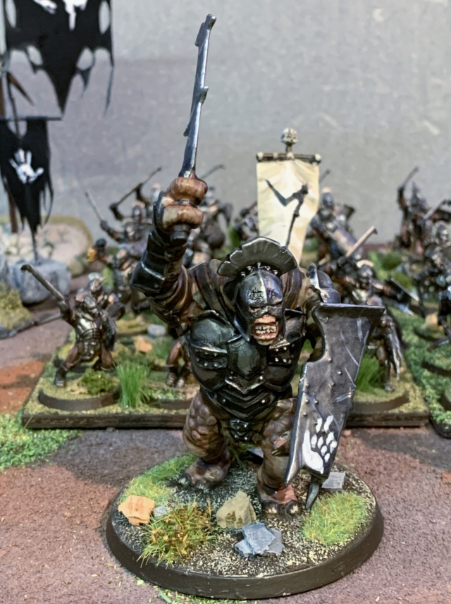 Sauron et ses 10 Armées - L' Armée de L'Immortel - Page 5 Img_3518