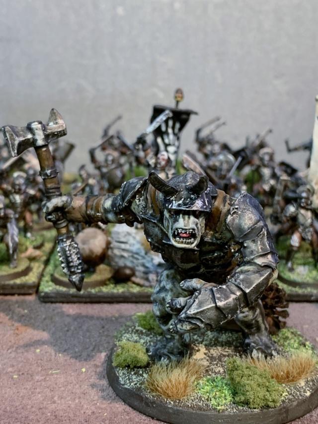 Sauron et ses 10 Armées - L' Armée de L'Immortel - Page 5 Img_3521