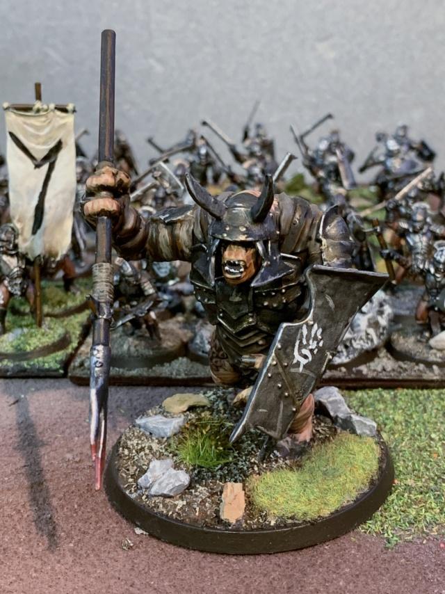 Sauron et ses 10 Armées - L' Armée de L'Immortel - Page 5 Img_3524