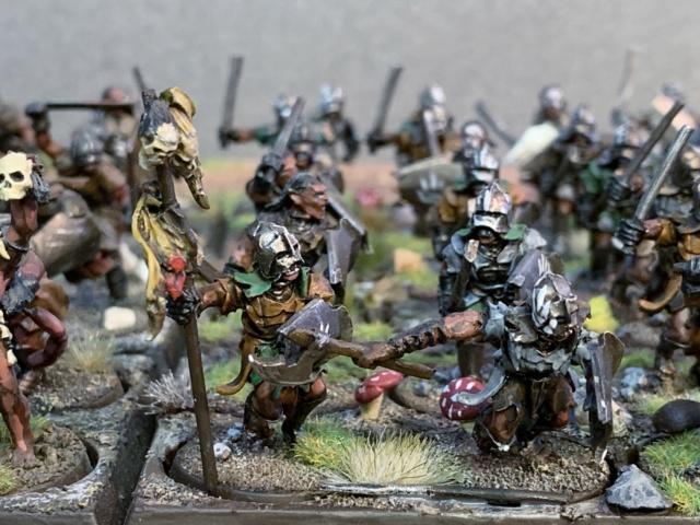 Sauron et ses 10 Armées - L' Armée de L'Immortel - Page 5 Img_3528