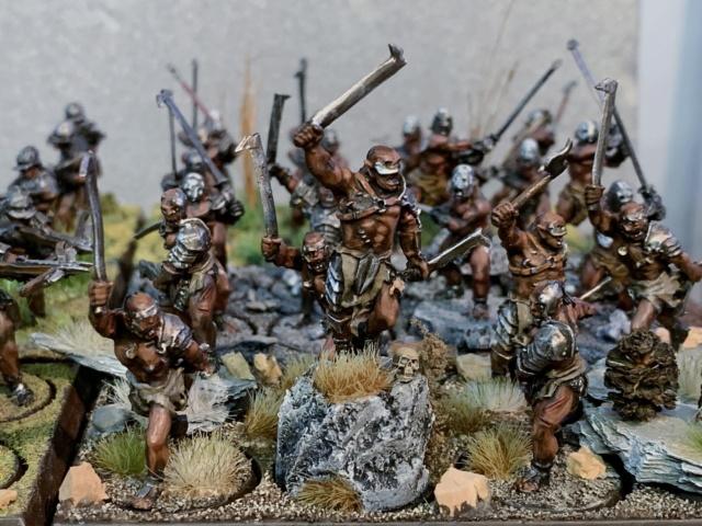 Sauron et ses 10 Armées - L' Armée de L'Immortel - Page 5 Img_3539