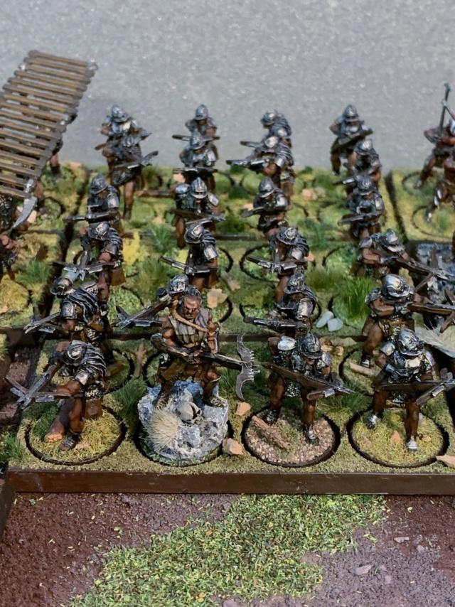 Sauron et ses 10 Armées - L' Armée de L'Immortel - Page 5 Img_3541
