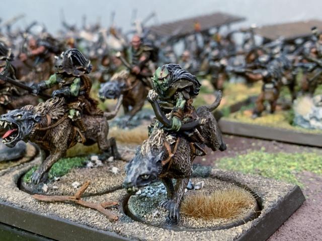 Sauron et ses 10 Armées - L' Armée de L'Immortel - Page 5 Img_3542