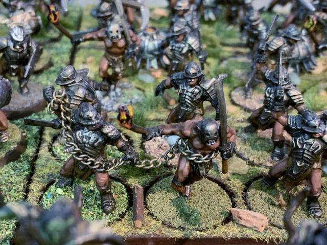 Sauron et ses 10 Armées - L' Armée de L'Immortel - Page 5 Img_3544