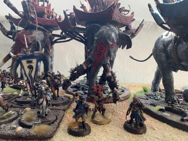Sauron et ses 10 Armées - L' Armée de L'Immortel - Page 5 Img_4310