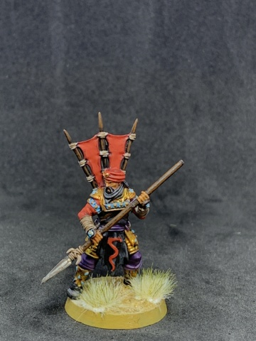Sauron et ses 10 Armées - L' Armée de L'Immortel - Page 5 Img_4312