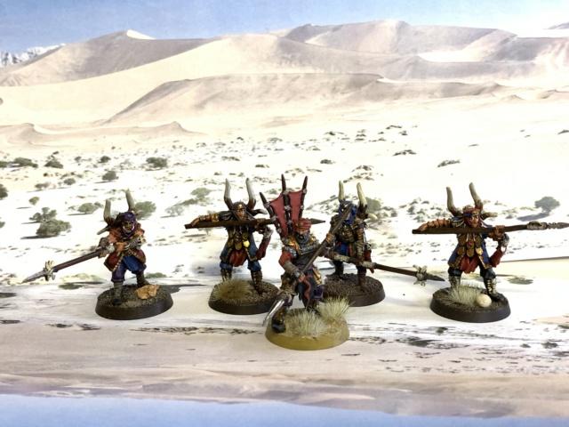 Sauron et ses 10 Armées - L' Armée de L'Immortel - Page 6 Img_4641