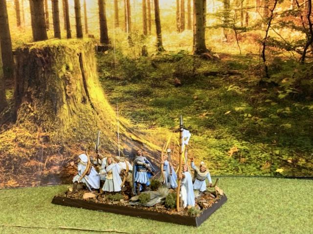 Aragorn et les 5 Armées - Rohan - Page 4 Img_4655