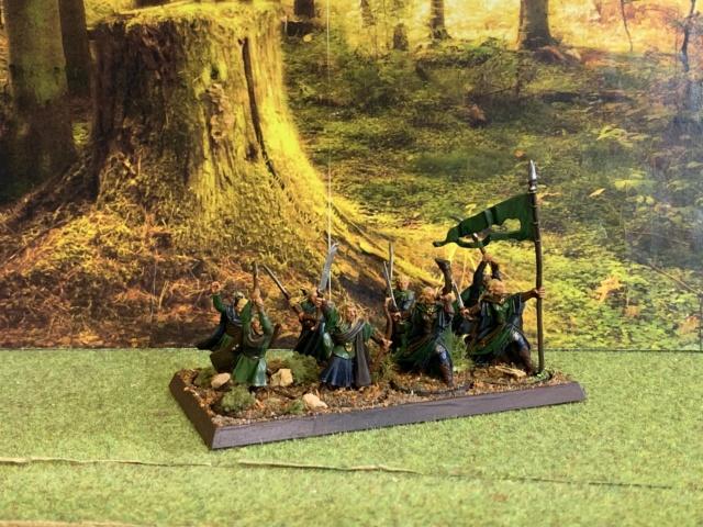 Aragorn et les 5 Armées - Rohan - Page 4 Img_4658