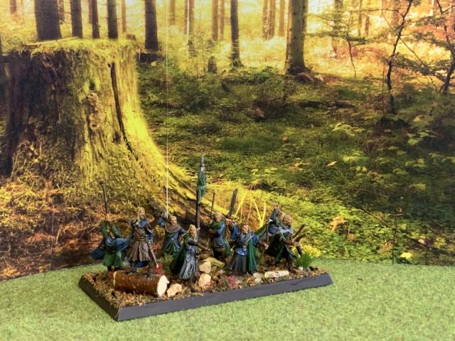 Aragorn et les 5 Armées - Rohan - Page 4 Img_4660