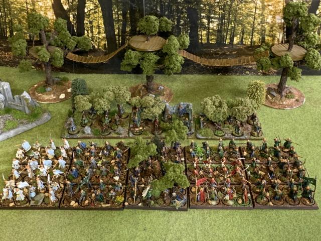 Aragorn et les 5 Armées - Rohan - Page 4 Img_4711