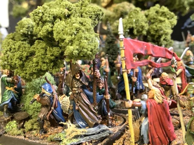 Aragorn et les 5 Armées - Rohan - Page 4 Img_4713