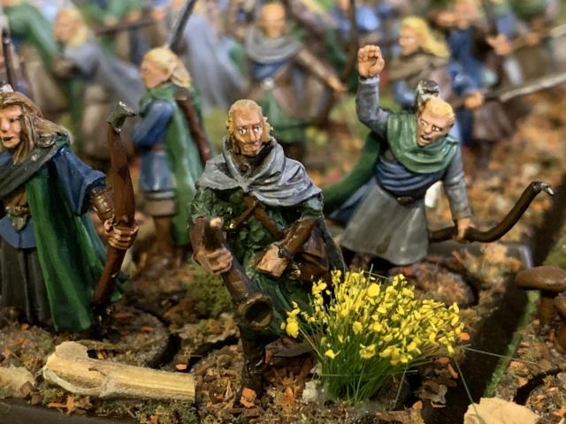 Aragorn et les 5 Armées - Rohan - Page 4 Img_4716