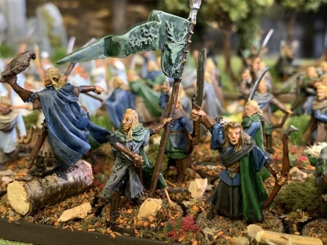 Aragorn et les 5 Armées - Rohan - Page 4 Img_4717