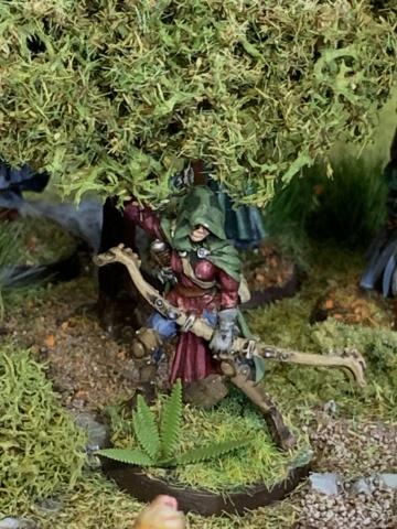 Aragorn et les 5 Armées - Rohan - Page 4 Img_4719