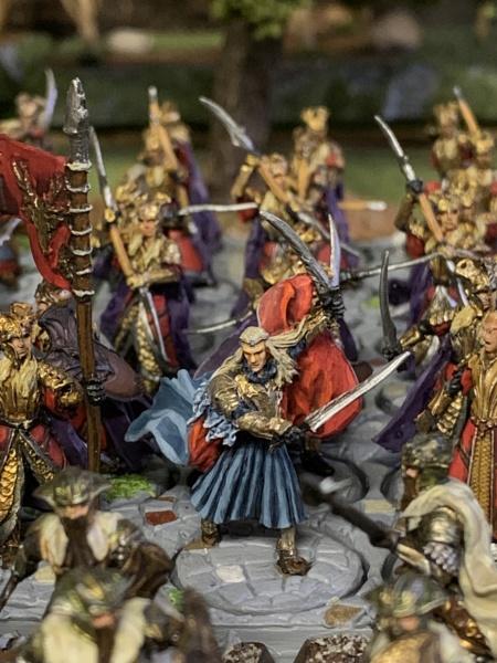 Aragorn et les 5 Armées - Rohan - Page 4 Img_5611