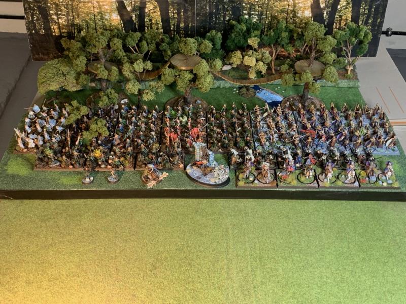 Aragorn et les 5 Armées - Rohan - Page 4 Img_5710