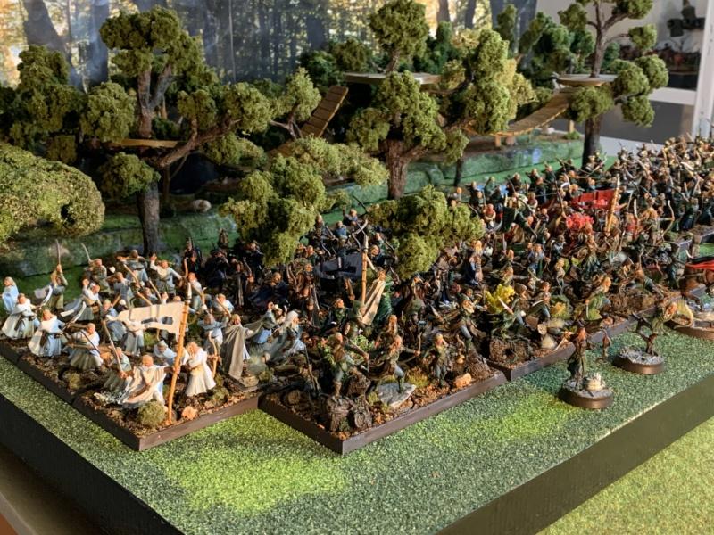 Aragorn et les 5 Armées - Rohan - Page 4 Img_5711