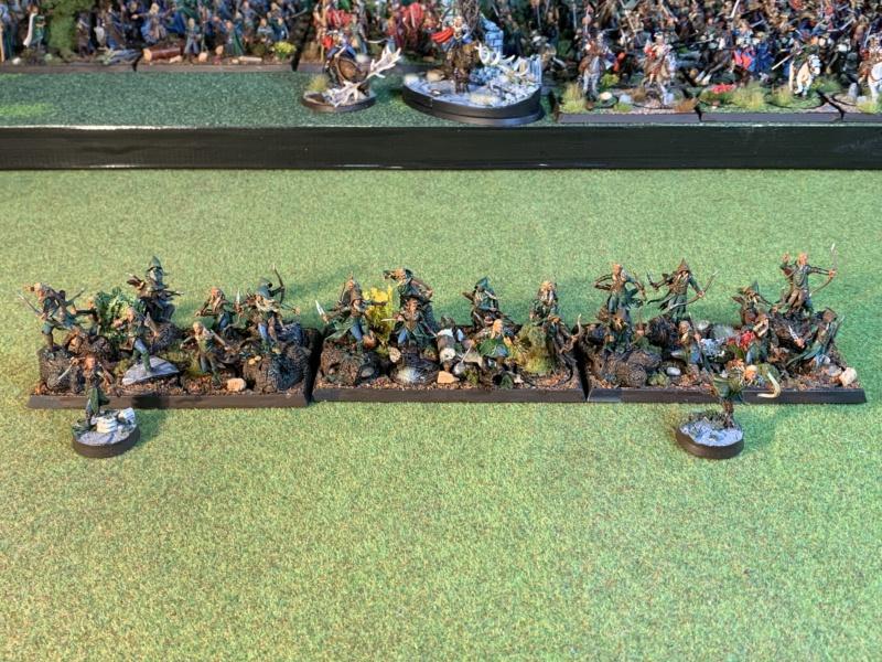 Aragorn et les 5 Armées - Rohan - Page 4 Img_5719