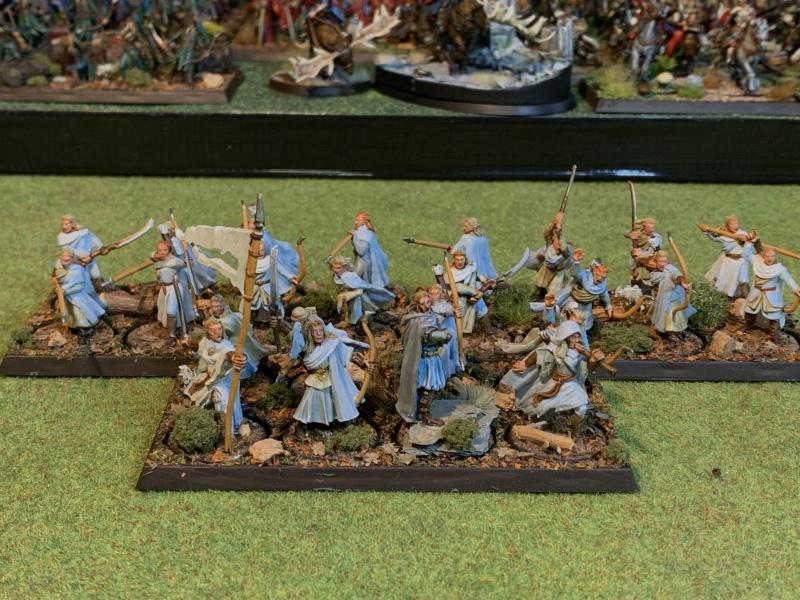 Aragorn et les 5 Armées - Rohan - Page 4 Img_5722