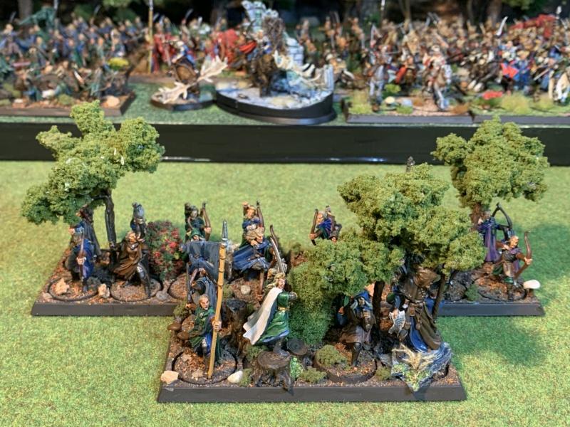 Aragorn et les 5 Armées - Rohan - Page 4 Img_5726
