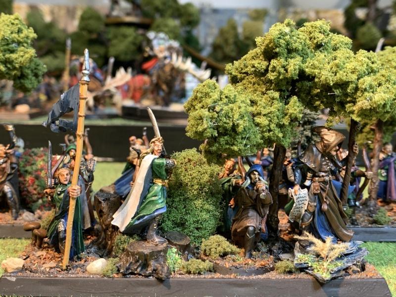 Aragorn et les 5 Armées - Rohan - Page 4 Img_5727