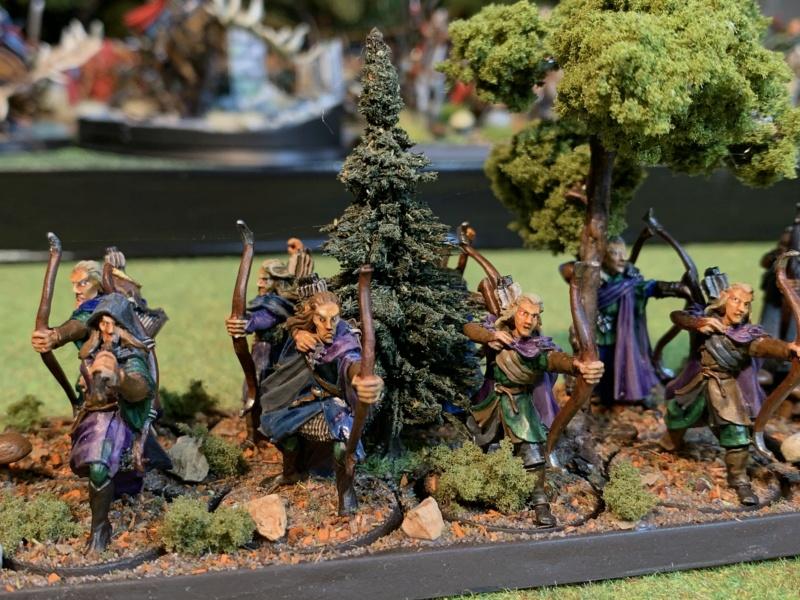 Aragorn et les 5 Armées - Rohan - Page 4 Img_5730