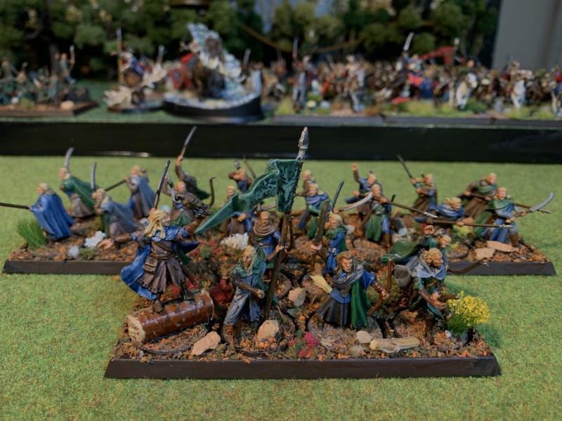 Aragorn et les 5 Armées - Rohan - Page 4 Img_5731