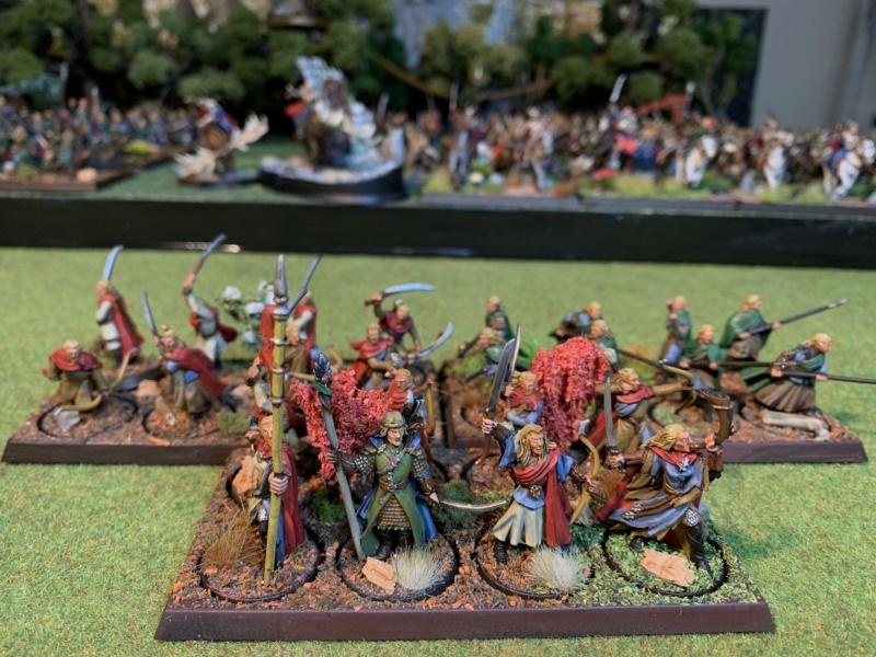 Aragorn et les 5 Armées - Rohan - Page 4 Img_5732
