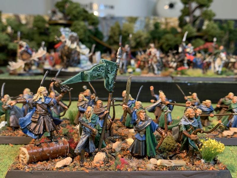 Aragorn et les 5 Armées - Rohan - Page 4 Img_5733