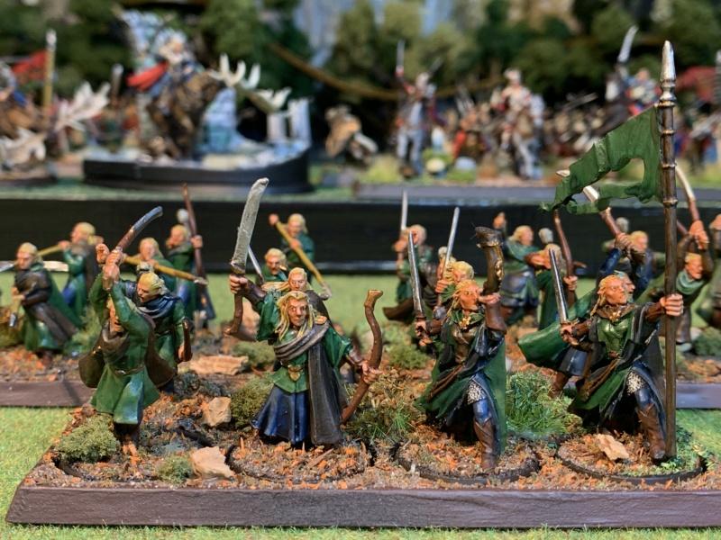 Aragorn et les 5 Armées - Rohan - Page 4 Img_5736