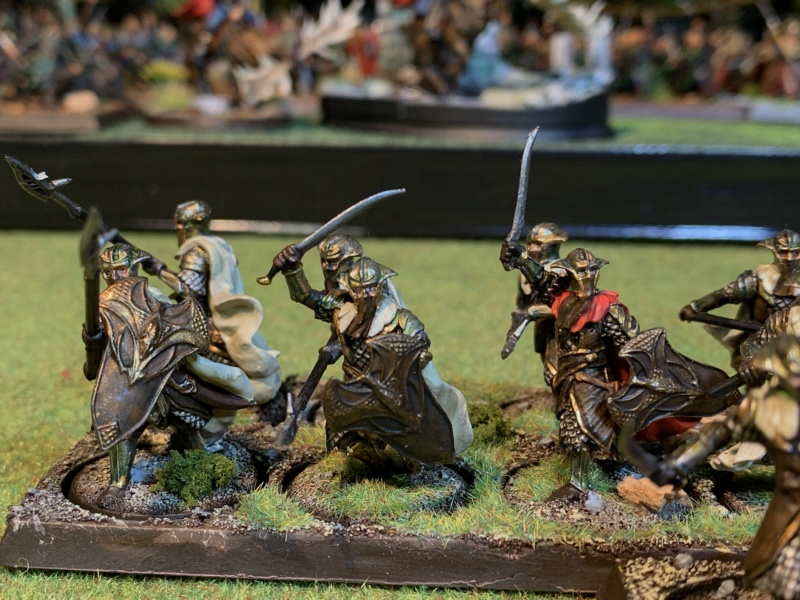 Aragorn et les 5 Armées - Rohan - Page 4 Img_5740