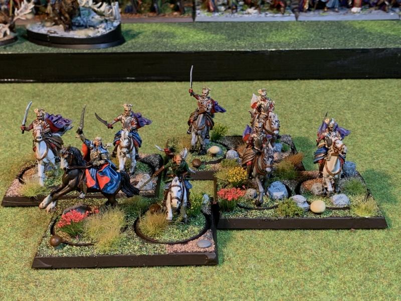 Aragorn et les 5 Armées - Rohan - Page 4 Img_5741