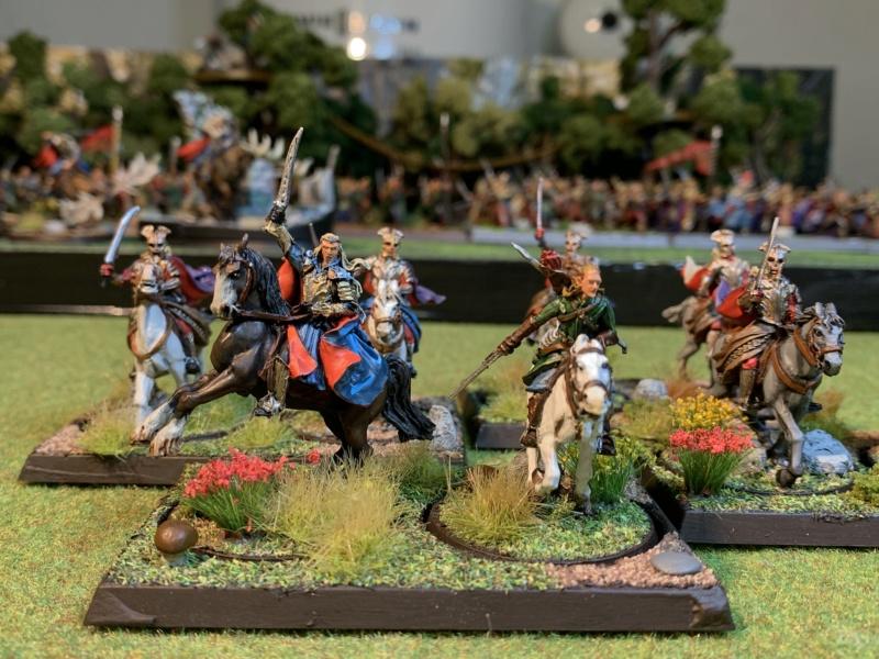 Aragorn et les 5 Armées - Rohan - Page 4 Img_5742