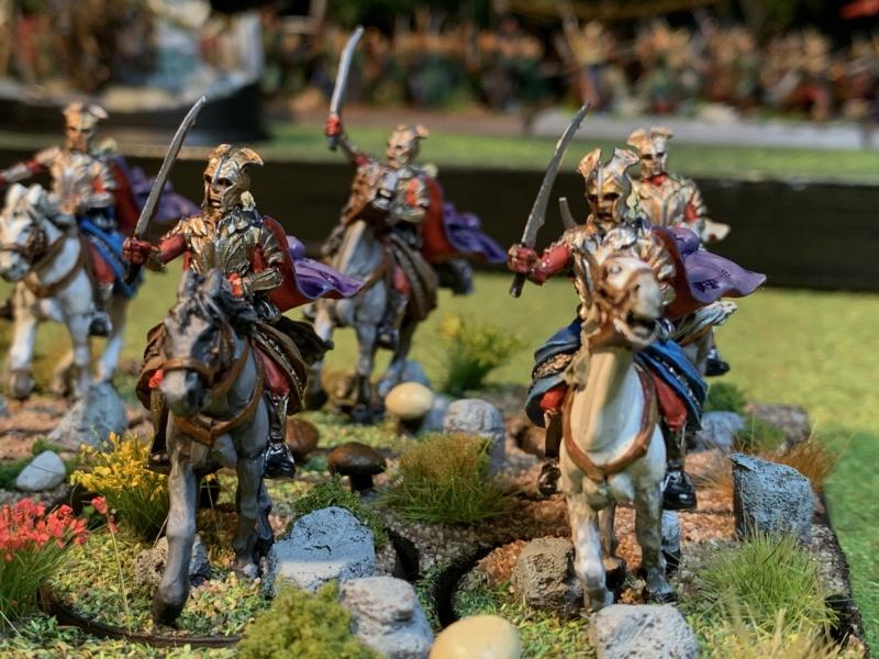 Aragorn et les 5 Armées - Rohan - Page 4 Img_5743