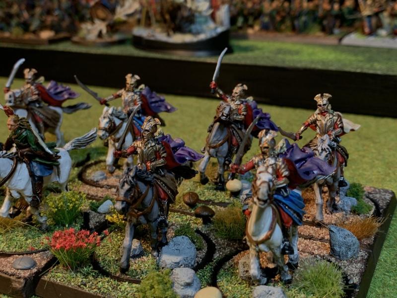 Aragorn et les 5 Armées - Rohan - Page 4 Img_5810