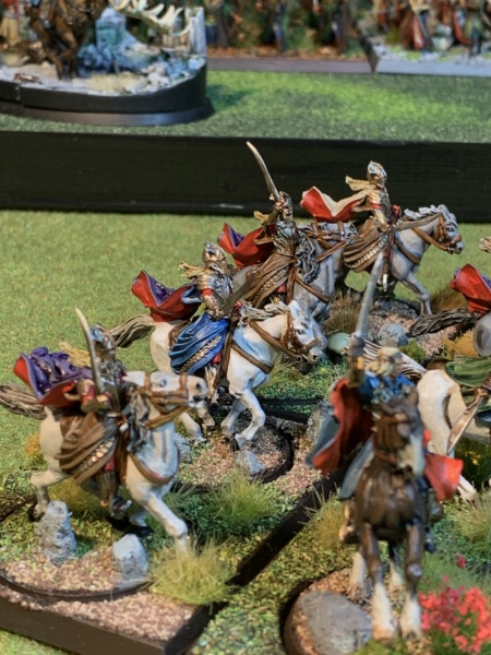 Aragorn et les 5 Armées - Rohan - Page 4 Img_5811