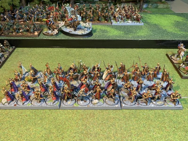 Aragorn et les 5 Armées - Rohan - Page 4 Img_5818