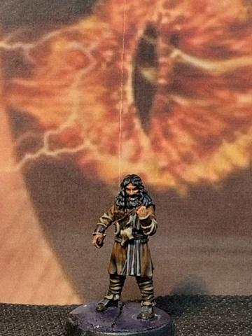 Sauron et ses 10 Armées - L' Armée de L'Immortel - Fin - Page 6 Img_6212