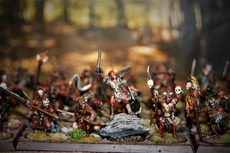Sauron et ses 10 Armées - Update - Page 4 Img_6312